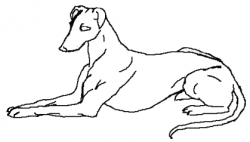 Greyhound clipart black and white