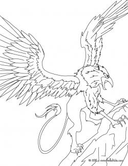 Drawn griffon greek mythology