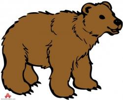 Animl clipart bear