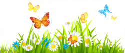 Insect clipart flower meadow