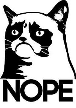 Drawn grumpy cat black and white