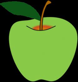 Guava clipart vector