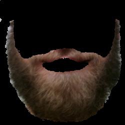 Realistic clipart beard