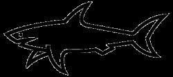 Fins clipart shark head