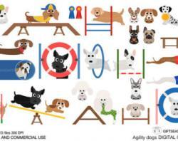 Tunnel clipart dog agility