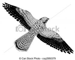 Kestrel clipart black and white