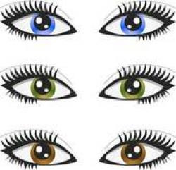 Hazel Eyes clipart