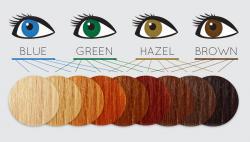 Brunette clipart hair color