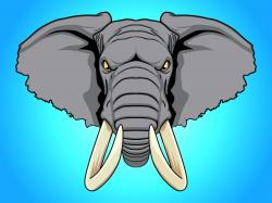 Tusk clipart angry elephant