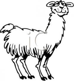 Lama clipart black and white