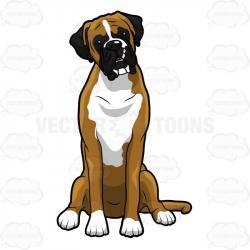 Labrador clipart boxer dog