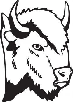 Bison clipart face