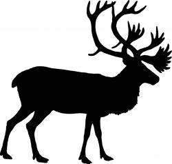 Caribou clipart face