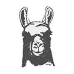 Lama clipart head