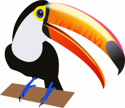 South America clipart toucan