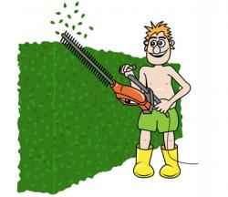 Hedges clipart cartoon