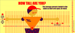 Heights clipart tall person
