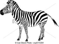 Herbivorous clipart zebra animal