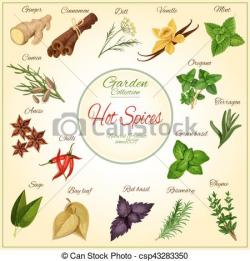 Herbs And Spices clipart photography