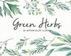 Herbs clipart botanical