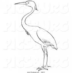 Egret clipart heron bird