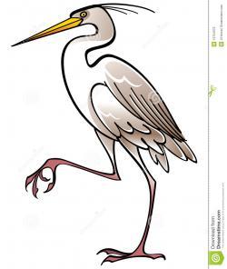 Green Heron clipart heron bird