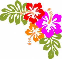 Floral clipart hibiscus flower