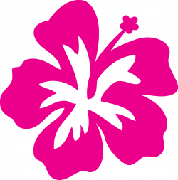 Plumeria clipart cartoon