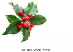 Holley clipart holly bush