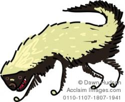 Honey Badger clipart drawn