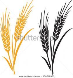 Malt clipart beer wheat