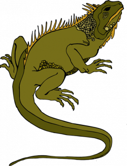Gecko clipart yellow spotted