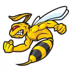 Hornet clipart angry bee