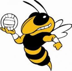 Hornet clipart volleyball