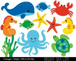 Marine Life clipart ocean animal