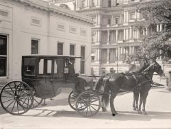 Drawn trolley old horse