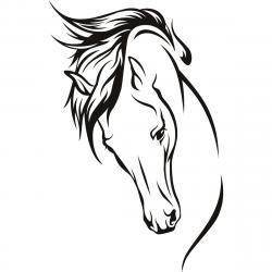Head clipart arabian horse