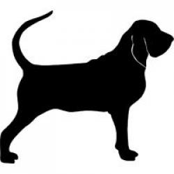 Bloodhound clipart coon dog