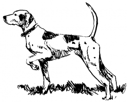 Pointer clipart pointer dog