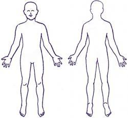 Human clipart full body