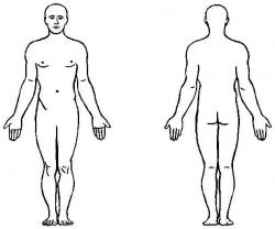 Rear clipart human figure
