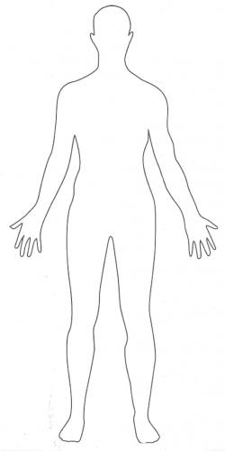 Shoulder clipart body outline