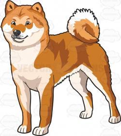 Akita clipart puppy