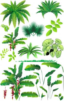 Hut clipart rainforest