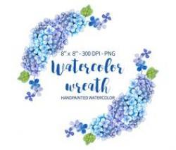 Hydrangea clipart blue hydrangea