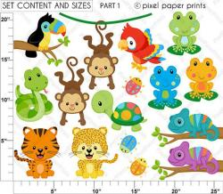 Safari clipart rainforest animal