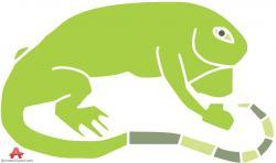 Green Iguana clipart amphibian