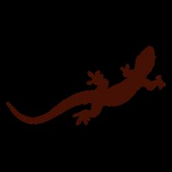 Iguana clipart newt