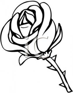 Thorns clipart cartoon