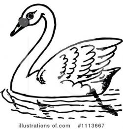 Illustration clipart swan